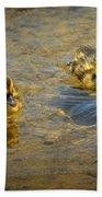 Baby Ducks Beach Towel