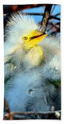 Baby Egrets Beach Towel