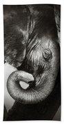 Baby Elephant Seeking Comfort Beach Sheet