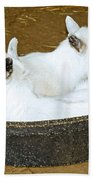 Baby Goats Lying In Food Pan Beach Towel