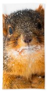 Baby It's Cold Outside Beach Towel by Optical Playground By MP Ray