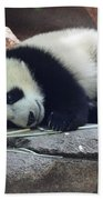 Baby Panda Beach Towel