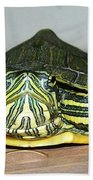 Baby Turtle Straight On Beach Towel