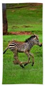 Baby Zebra Running Beach Towel
