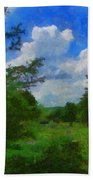 Back Yard View Beach Towel by Jeff Kolker