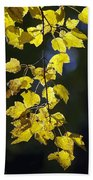 Backlit Leaves Of Autumn Beach Towel