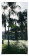 Backlit Palms Beach Towel