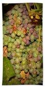 Backyard Garden Series -hidden Grape Cluster Beach Towel