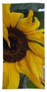 Bad Petal Day  Beach Towel