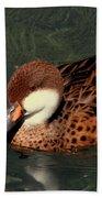 Bahama Pintail Duck Beach Towel