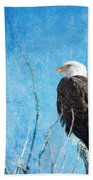 Bald Eagle Blues Beach Towel
