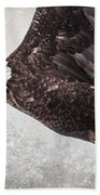 Bald Eagle Fly By Beach Towel