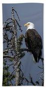 Bald Eagle On Watch Beach Towel
