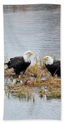 Bald Eagle Pair Beach Towel