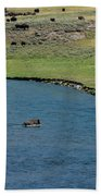 Baldy And Bull Beach Towel