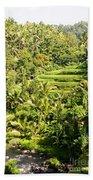 Bali Sayan Rice Terraces Beach Towel