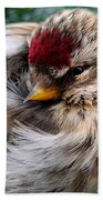 Ball Of Feathers Beach Towel by Christina Rollo