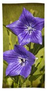 Balloon Flower Beach Towel by Marcia Colelli