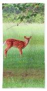 Bambi Days Beach Towel