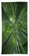 Bamboo Forest 1 Beach Towel