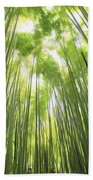 Bamboo Forest 5 Beach Towel