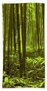 Bamboo Forest Twilight  Beach Towel