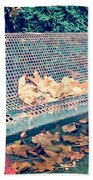 Banc Public Beach Towel