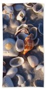 Banded Tulip Beach Towel