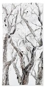 Bare Branches Print Option 2 Beach Towel