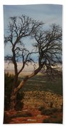 Bare Tree Beach Towel