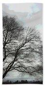 Bare Trees Winter Sky Beach Towel