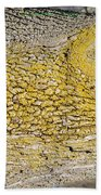 Bark Art Beach Towel