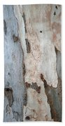 Bark Of A Eucalyptus Tree Beach Towel