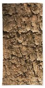Bark Of A Tree Beach Towel