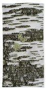 Bark Of Paper Birch Beach Towel