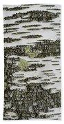 Bark Of Paper Birch Beach Sheet