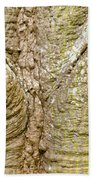Bark Of Silk Floss Tree Background Texture Pattern Beach Towel