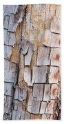 Bark On A Tree In The Desert In Sedona Beach Towel