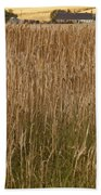 Barley Field Beach Towel