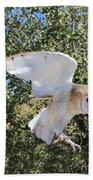 Barn Owl 2 Beach Towel