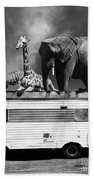 Barnum And Bailey Goes On A Road Trip 5d22705 Vertical Black And White Beach Towel