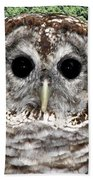 Barred Owl 1 Beach Towel