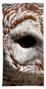 Barred Owl 2 Beach Towel