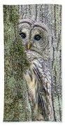 Barred Owl Peek A Boo Beach Sheet