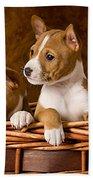 Basenji Puppies Beach Towel by Marvin Blaine