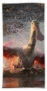 Bath Time - Roseate Spoonbill Beach Towel