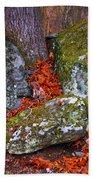 Battlefield In Fall Colors Beach Towel