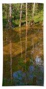 Bayou Reflections Beach Towel