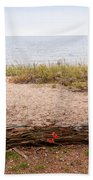 Beach Path Beach Towel