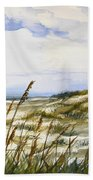 Beach Watercolor 3-19-12 Julianne Felton Beach Towel